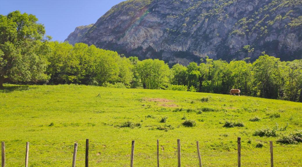 Paysage du Fontanil-Cornillon